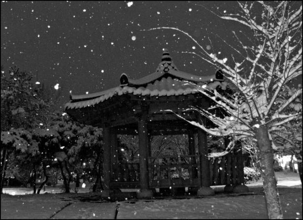 first snow 2012 (2)