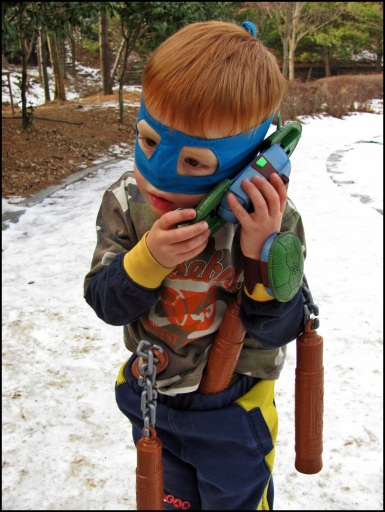 Ninja Turtle Jan 13 (70)