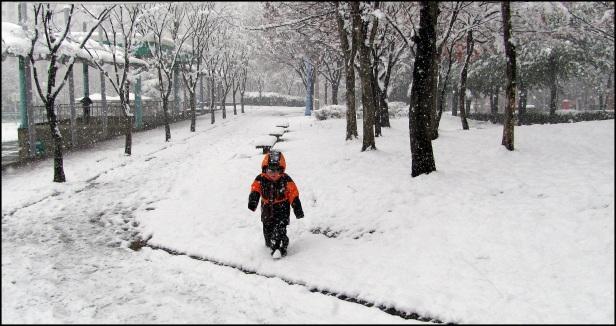 First Snow 261