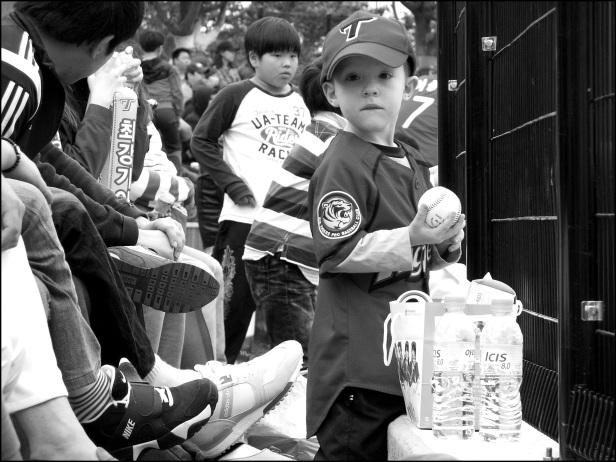 baseball 181