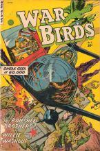 War-Birds-01-pg-01