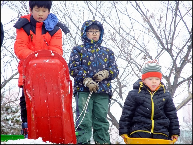 sledding jan 2015 193